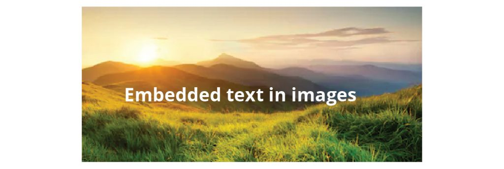 Embedded Text in Images