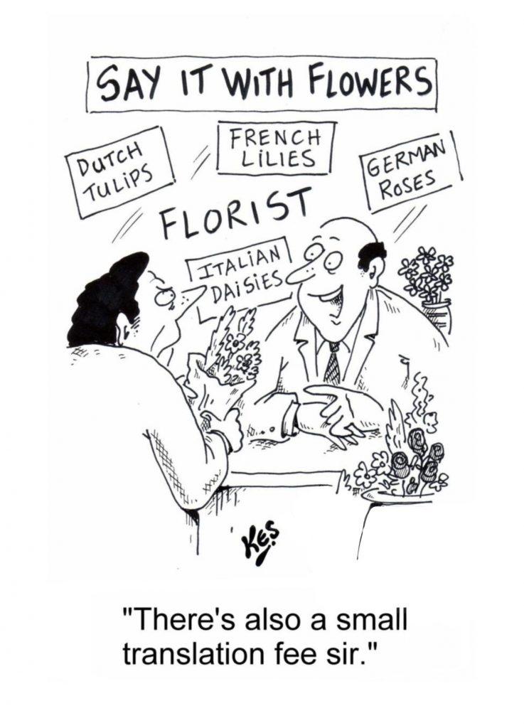 Customer support translation comic