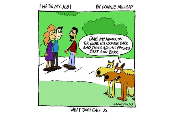 dog language communication